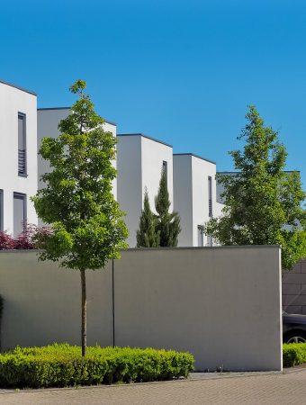 architecture-3383067_1920.jpg